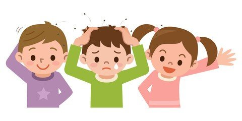 Head Lice….Natural Remedies