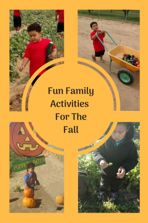 Family Friendly Activities For The Fall