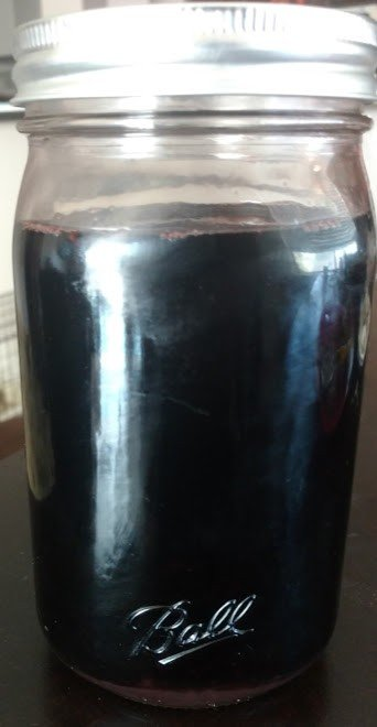 Boost the Immune System with Elderberry Syrup