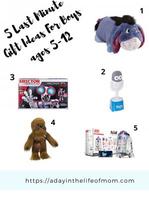 Last Minute Gift Ideas Gift Guide for Little Boys