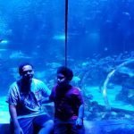 SeaLife Aquarium Arizona