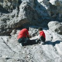 Find Fossils at Indian Gardens Paleo Dig in Payson Az